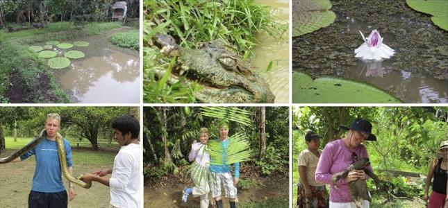 4 day jungle tour